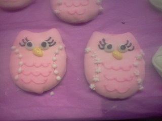 Owl Fancy
