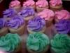 mini-cupcakes_0